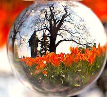 Jesus Watched as the Orange Tulips Bloomed by kelleygirl
