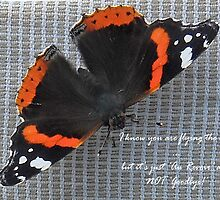 Au Revoir Butterfly card by sarnia2