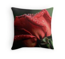 """Covered with Diamonds .............."" Throw Pillow"