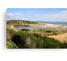 Sand Dune System, South Australia Canvas Print