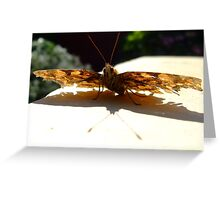 the flyer 2 Greeting Card