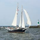 Lake Michigan Schooner by Karen K Smith