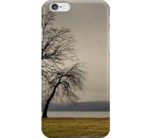 Peekskill Riverfront iPhone Case/Skin