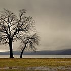 Peekskill Riverfront by JHRphotoART