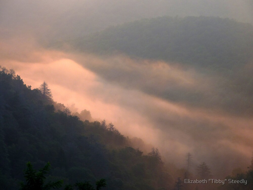 The Magic of Morning by Tibby Steedly
