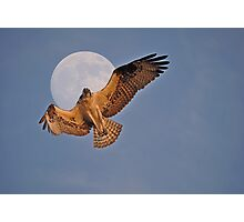 Flying Osprey and Super Moon Photographic Print