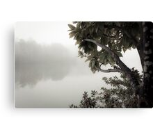 in a fog | 01 Canvas Print