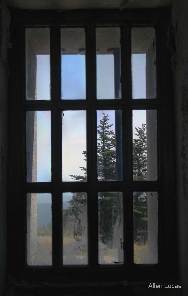 Through the Lighthouse Window by Allen Lucas