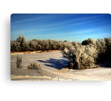NATURE'S BRUSH  Canvas Print