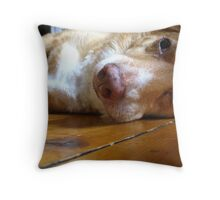 I`m Not Eating Toffee Throw Pillow