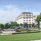 Park by Ana Belaj