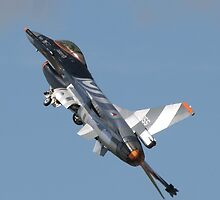 F-16 Fighting Falcon by Peter Barrett