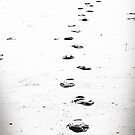 Hidden Journey by Tim Mannle