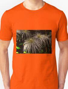 Spider Mums T-Shirt