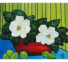 Magnolia Twins   SOLD Photographic Print