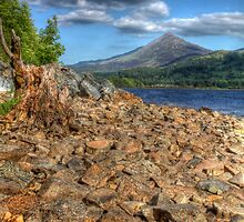 Schiehallion from Rannoch by Paul  Gibb