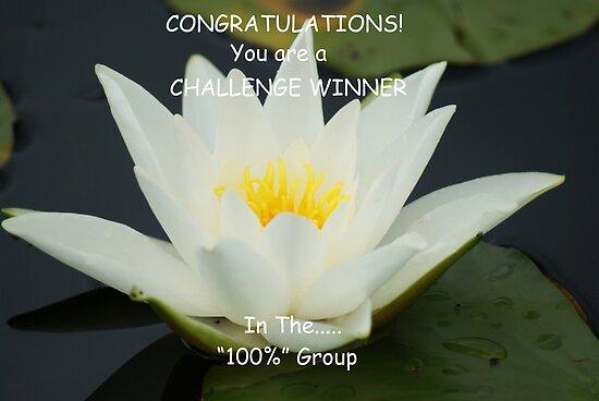 Challenge Winner Banner for 100% Group by Sandra Cockayne