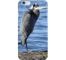 Stoic Enchantment iPhone Case/Skin