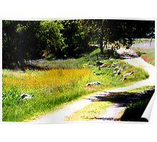 Walking trail  -Mckenzie Preserve California Poster