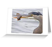 Expert Angler Greeting Card
