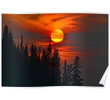 Cariboo Wildfire Sun Poster