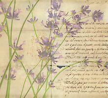The Postcard by Rebecca Cozart