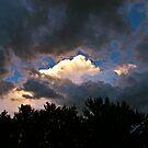 The Light - Colorado Springs, Colorado by FoxSpirit