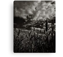 One so small against the world Canvas Print