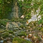 Mill Gill Force by Sue Knowles