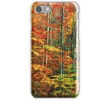 HARDWOOD FOREST,AUTUMN iPhone Case/Skin