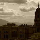 A storm approaching...(Malaga cathedral) by evilcat