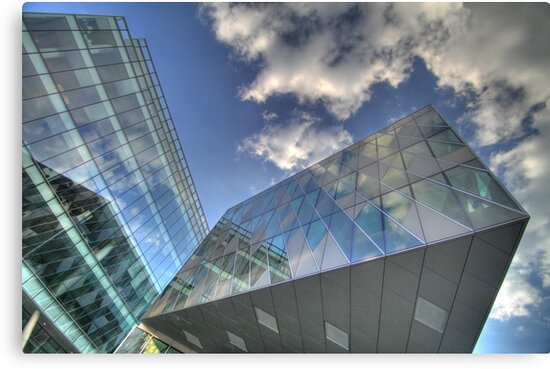 Looking Up by Phil Webb