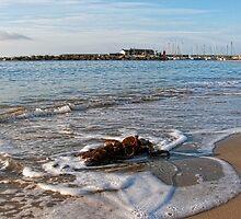 Along The Waterfront ~ Lyme Regis by Susie Peek