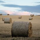 Big Round Bales in a Stubble Field by Lindamell