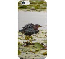 Hammond Pond, MA  iPhone Case/Skin