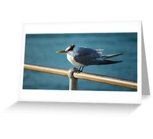 'Withstand the Wind' Greeting Card