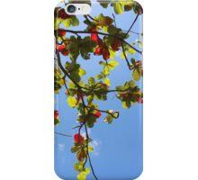 Leaves against blue sky iPhone Case/Skin