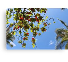 Leaves against blue sky Canvas Print