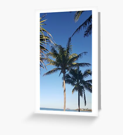 Palms and blue sky Greeting Card
