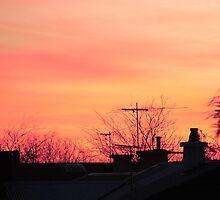 'Sunset in Suburbia' by Luke Weinel