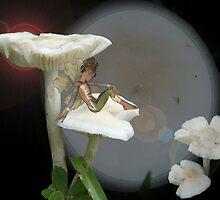 Mushroom Fairy by JELProductions