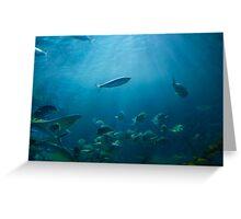 Underwater world Greeting Card