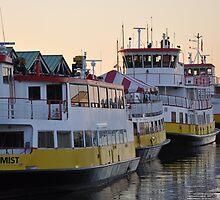 The Ferry Fleet Portland Maine  by John  Kapusta