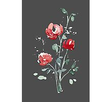 flowers. roses. flower happiness Photographic Print