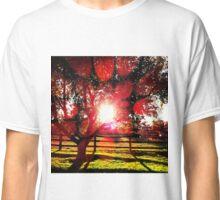 Apple Tree Sunshine Classic T-Shirt
