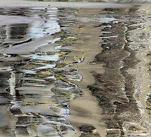 Reflected compexity by Haydee  Yordan