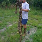 Snake by joedog