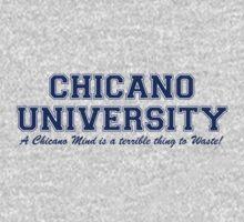 Chicano University by LatinoTime