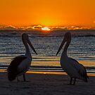 Kalbarri Sunset by Doug Cliff