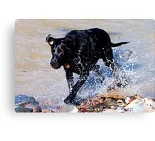Sam at the River Canvas Print